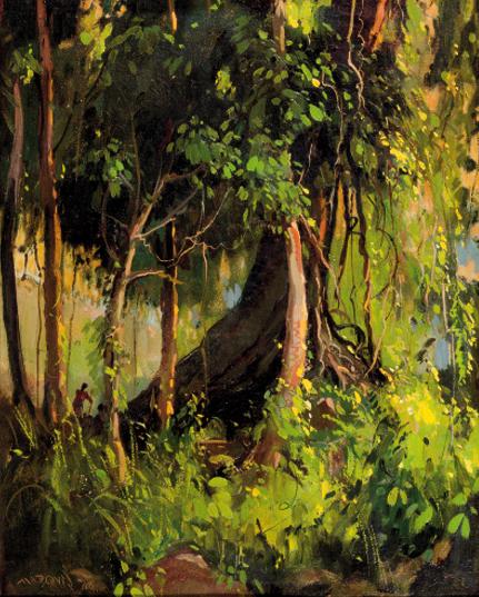 oliveira_forest