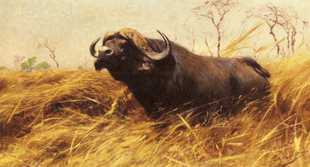 Kuhnert_Wilhelm_Friedrich_An_African_Buffalo