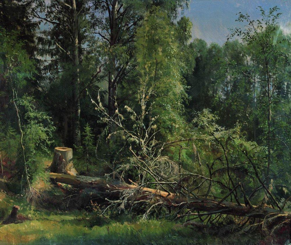 fallen_tree_ 1875_shishkin