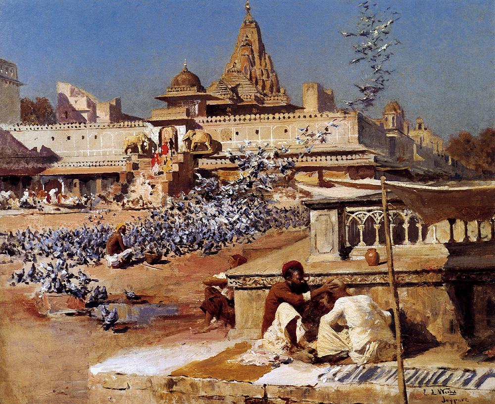 feeding-the-sacred-pigeons-jaipur_weeks