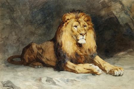 lion_couche_surand