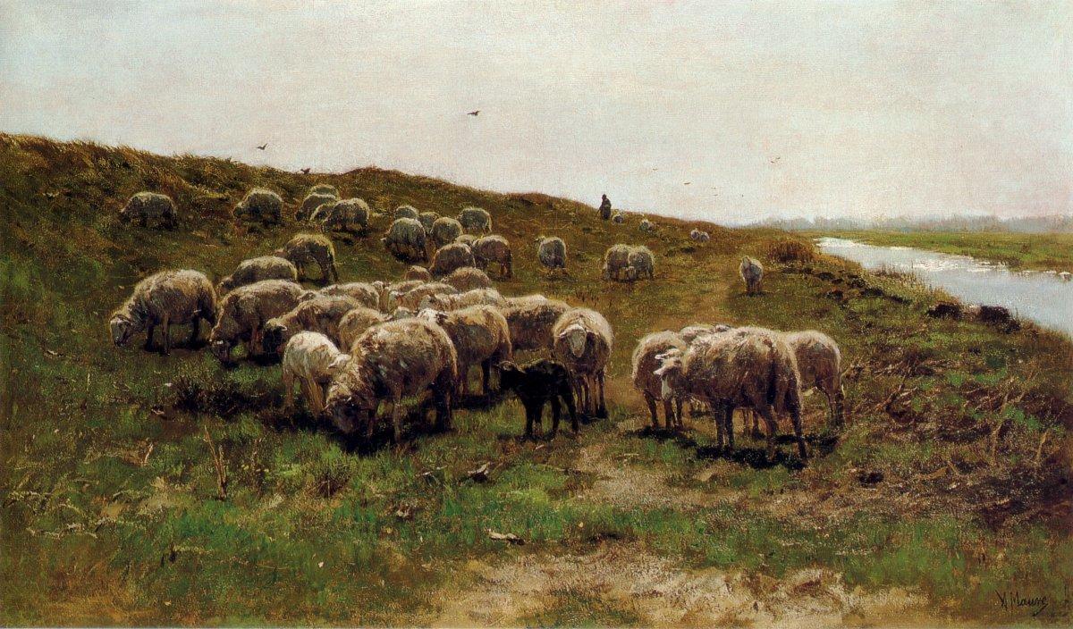 Anton_Mauve_-_Schapen_op_een_dijk