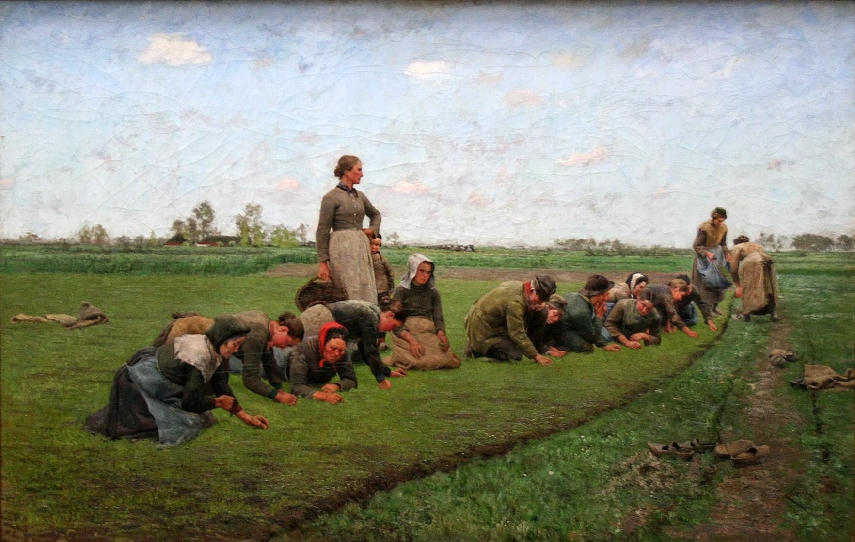 Vlaswieden in Vlaanderen - Emile Claus (1887)